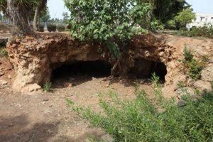 מקווה ישראל, שימור מבנים היסטוריים, אתרי מורשת